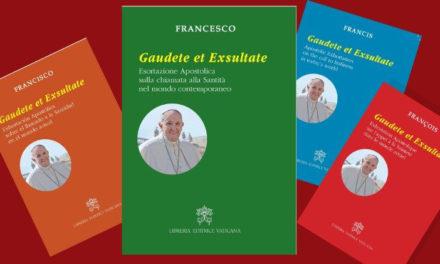 Papa Francesco: siamo tutti chiamati alla santità